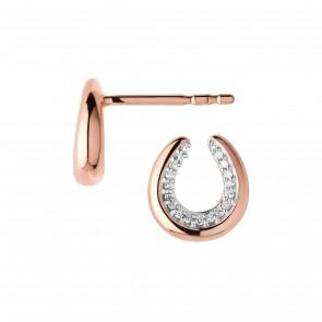 Ascot Stud Earrings