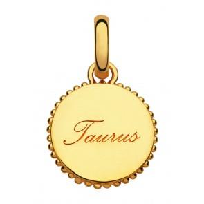 Taurus Charm