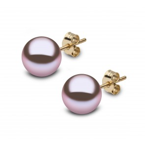 18ct Yellow Gold - Pearl Earrings (9x9.5mm)